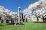 51_University of Otago.png